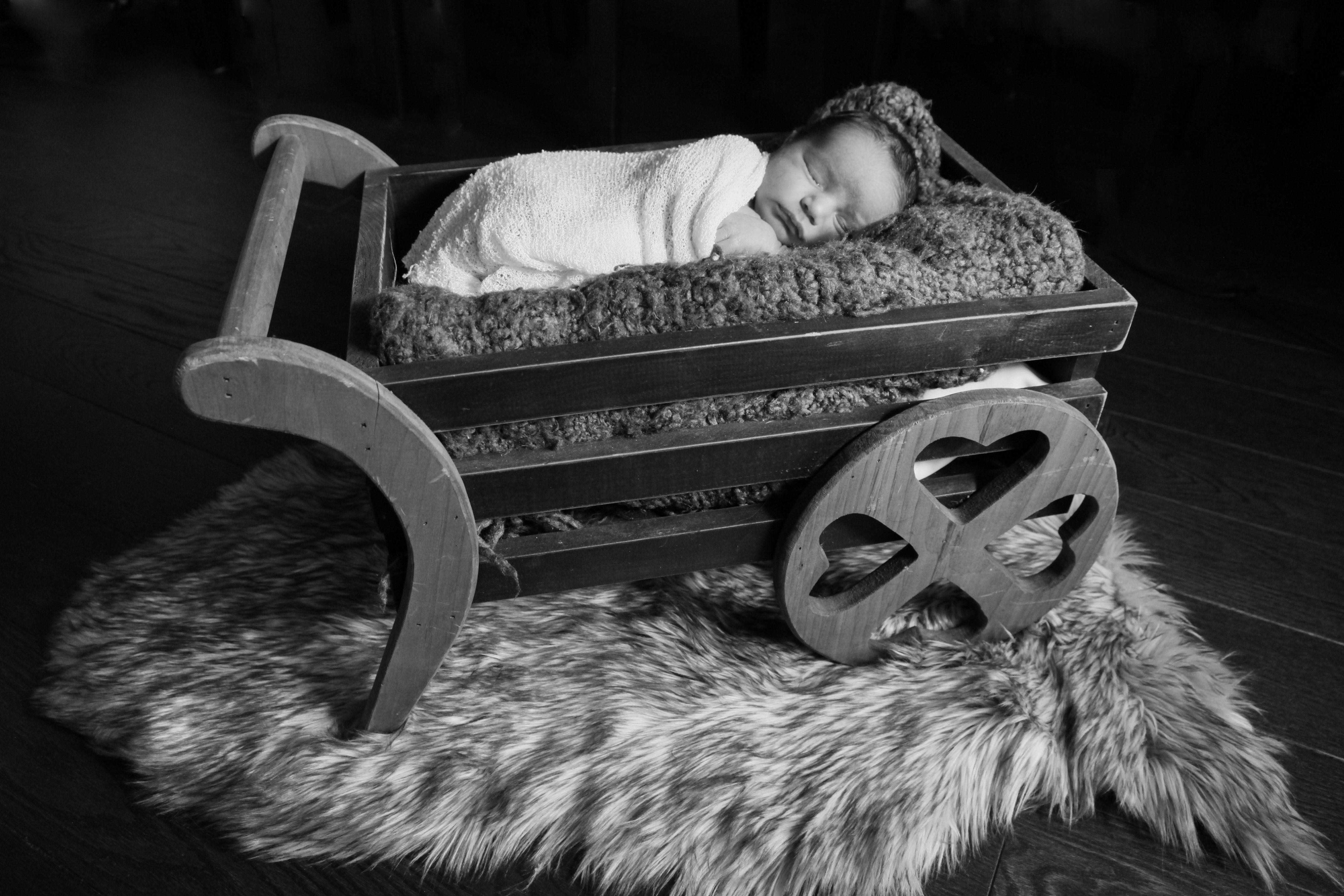 NewbornBabyPhoto16