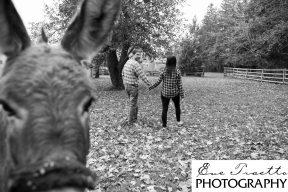 CaledonPhotographer - 8